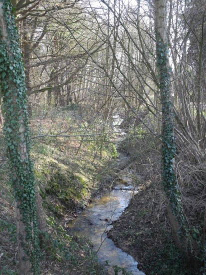 Renaturisierter Rothenbach in Höhe der Siedlung Kleine Heide
